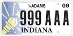License plate design #1